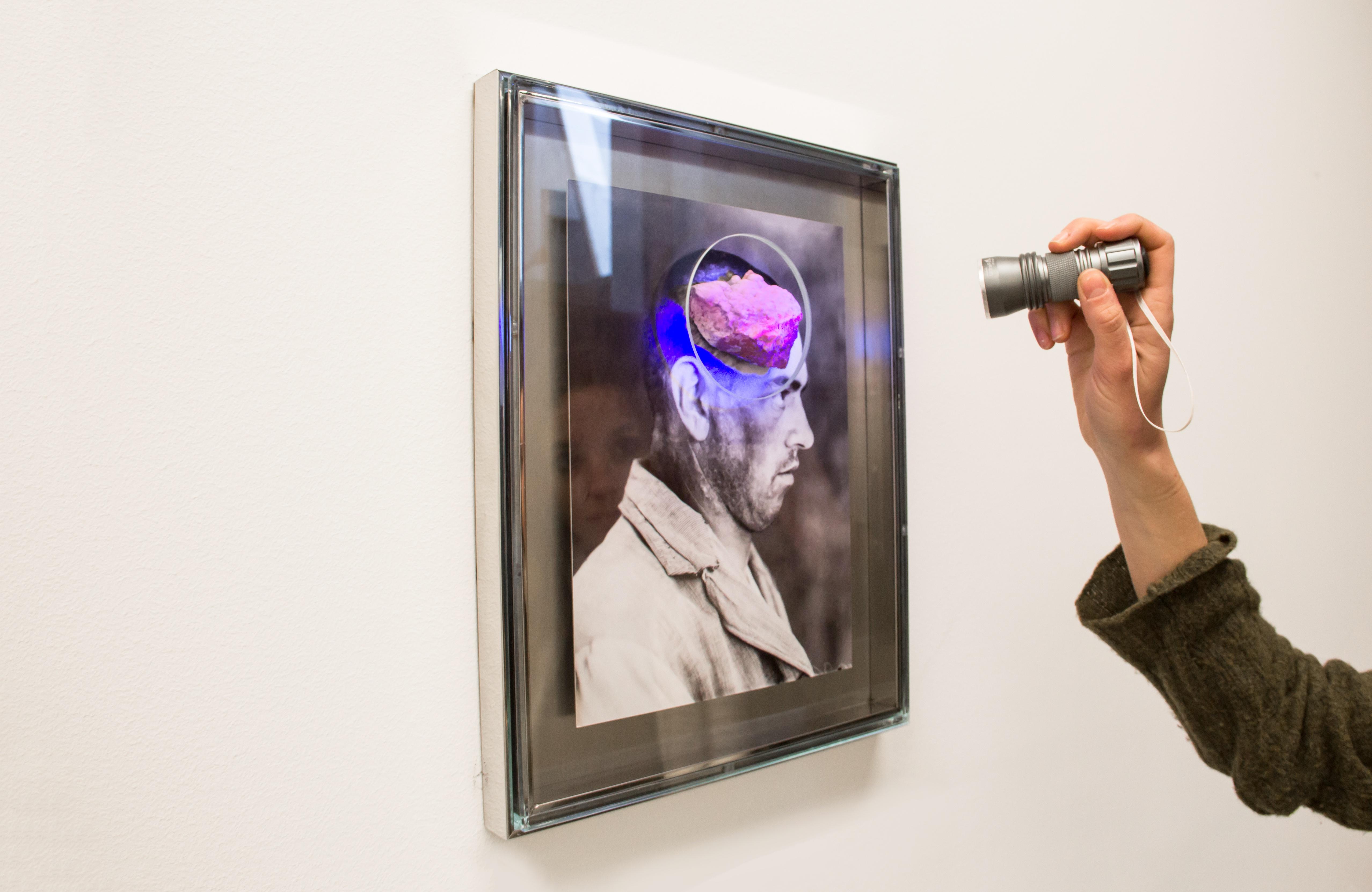 """Nootropic"", 2018, Installazione, pietra, foto d'archivio, acciaio, vetro, luce UV, 40 x 30 cm. Courtesy Galerie Alberta Pane"