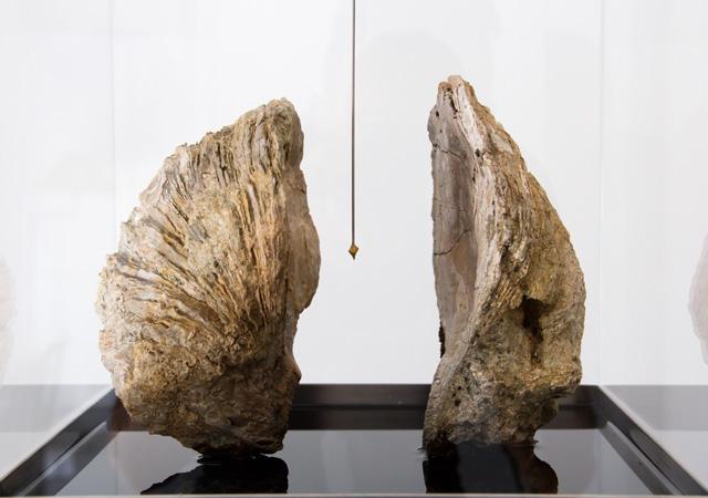 """Christian Fogarolli, """"Leucotomia"""" (dettaglio), 2017, pietre, oro, acciaio, olio naturale, vetro, Courtesy Contemporary Art Collection Finstral, Bolzano"""
